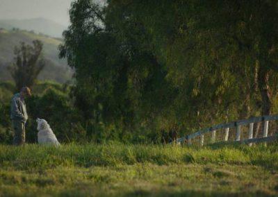 Afbeelding scene uit de film the biggest little farm